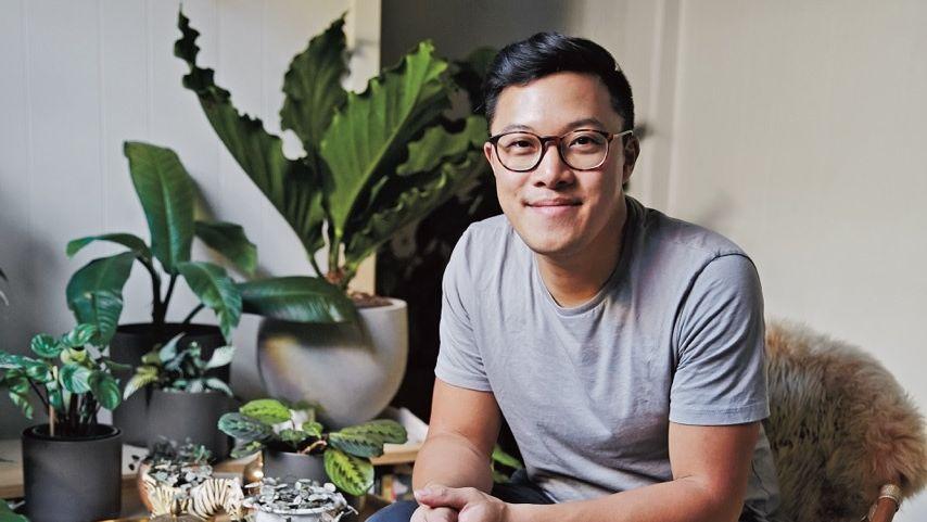 راز نگهداری انواع گیاهان آپارتمانی